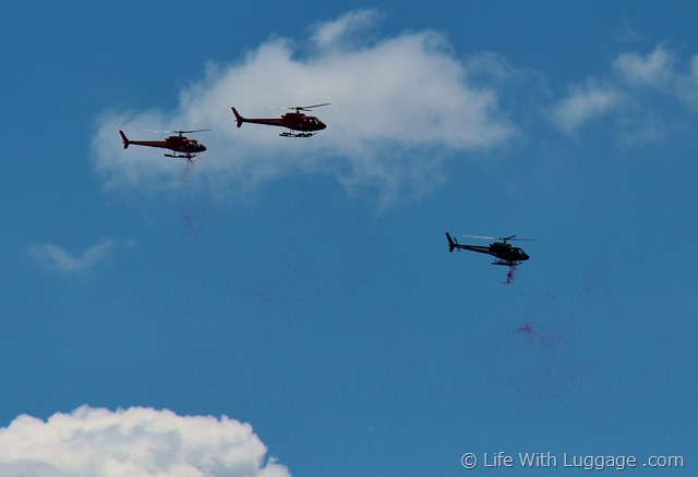 Helicopters Rose Petals