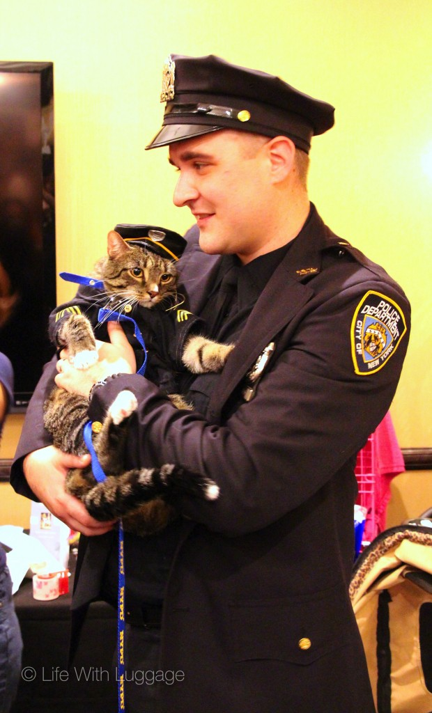 algonquin hotel nypd cat uniform 2